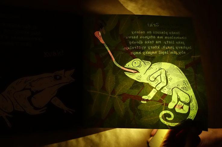 Kdo všechno se ukrývá v divočině? Která zvířata jsou šampioni v maskování? Když podržíš stránku proti světlu, objevíš svět plný překvapení.#kniha #svetlo #deti #zvirata