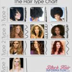 The Hair Type Chart