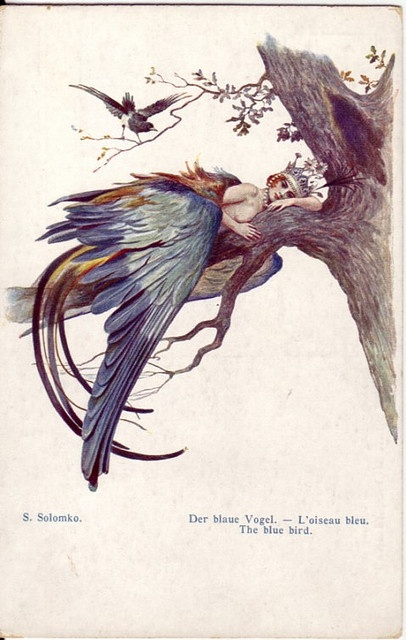 The Blue Bird S. Solomko.