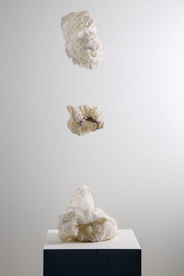"""""""Co-habitar"""" Instalación. Mención Honrosa 6° Salón de Artes Visuales, Corporación Cultural de Puerto Montt, Chile.   Termofijado, Shibori y técnica propia sobre tela."""