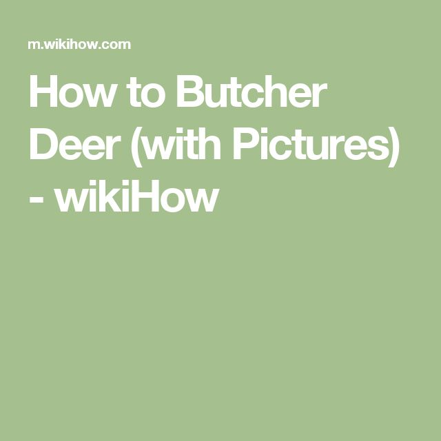 How to Butcher Deer (with Pictures) - wikiHow