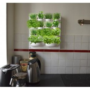 http://www.jardinageinterieur.fr/88-387-thickbox_default/mur-de-plantes-aromatiques.jpg