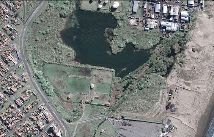 Imagen satelital de la Reserva Natural Puerto Mar del Plata, Buenos Aires. Foto: Googleearth