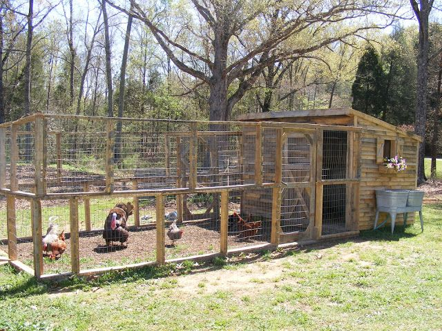 Our family took these.... Free Pallets.        And made this... A Chicken Coop.        And this is how...