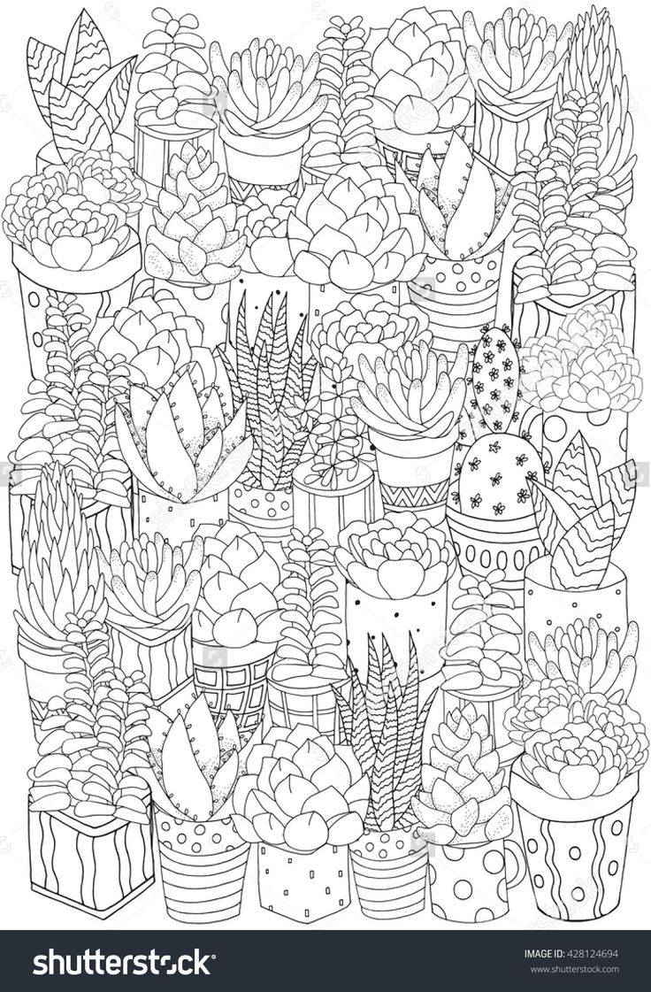 Hand drawn set of succulents, cactuses and pots. Doodles elements. Black and white. Coloring book page for adult A4 size. Succulent, doodles, vector, art design elements. Linear botanical vector.