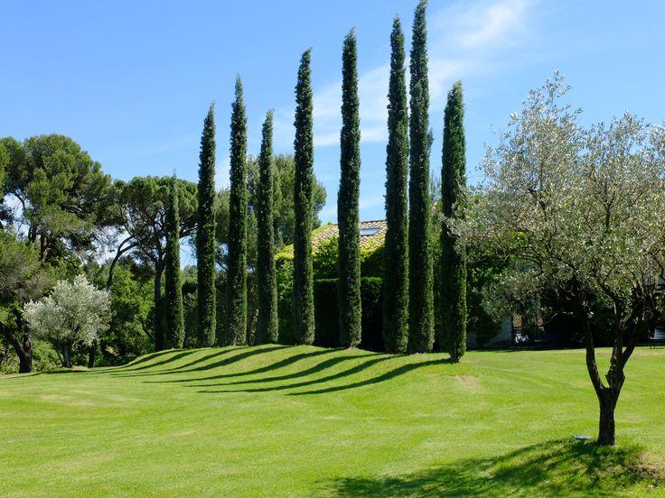 Jardin principal, visible depuis les espaces à disposition