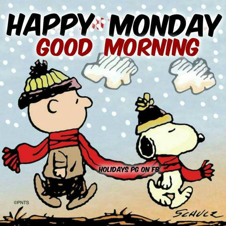 ✔ Happy Monday!  Good morning.   (winter)   --Peanuts Gang/Snoopy & Charlie Brown