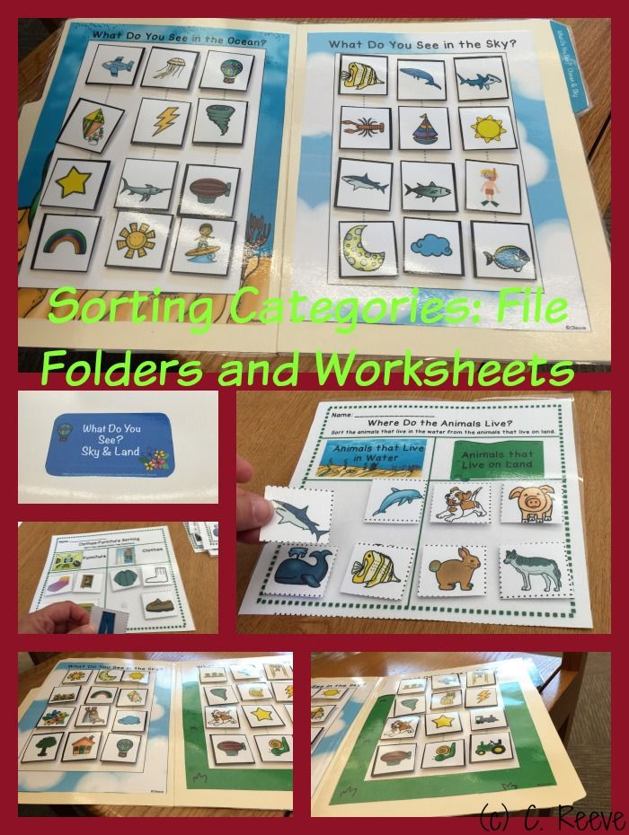 Receptive Vocabulary Sorting Categories for Autism and special education. File folders and print-and-go worksheets practicing sorting vocabulary by characteristics. $