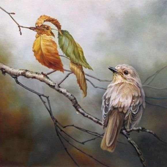 Ukrainian artist Oleg Shuplyak is widely recognized because of his illusory oil paintings.