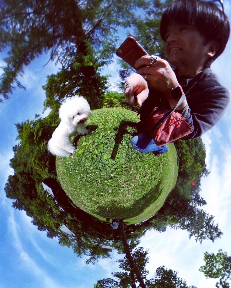"[[ Duke's Photo Archive]] ""Kuri's World"" My #dog Kuri at #Karuizawa Japan. くりちゃんの世界 #軽井沢 の #星野リゾート#トンボの湯 近くの #草原 にて  #instagram #photooftheday #instagood #jj #ig #igers #love #instagramhub #instamood #tweetgram #picoftheday #photography #webstagram #instagramers #theta360 #theta #resort #リゾート #イヌ #いぬバカ部 #わんこ  Taken on June 22nd 2017"