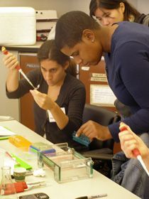Cornell University - Institute for Biology Teachers - Labs and Activities