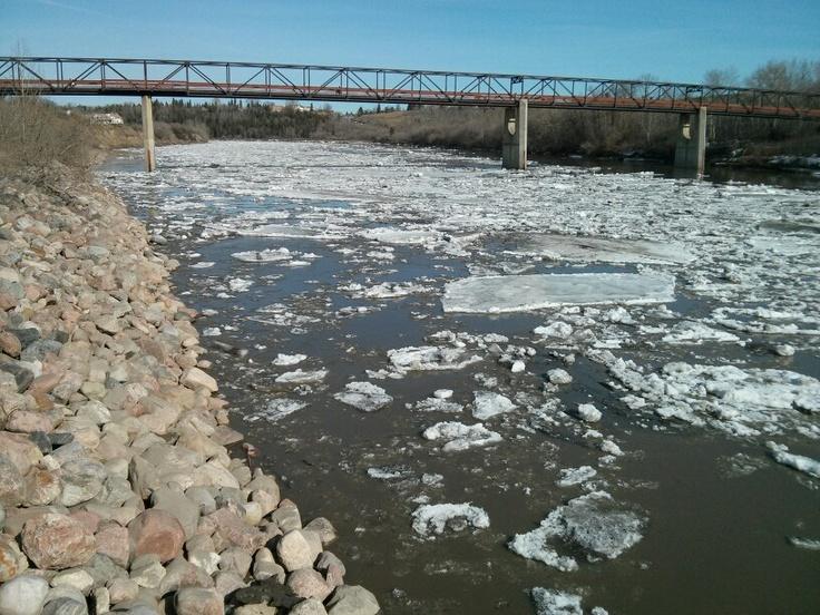 Edmonton river ice breaking and melting