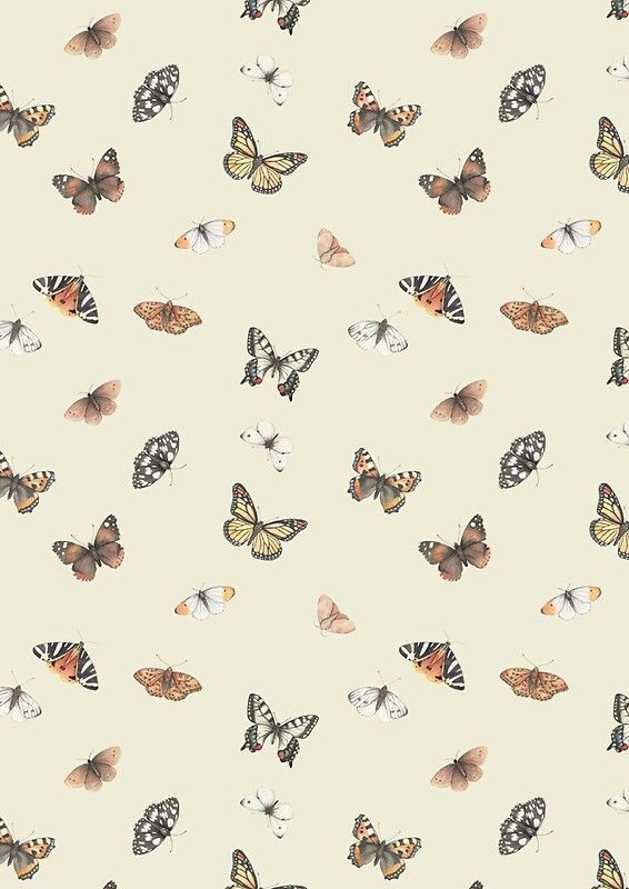 Background Aesthetic Screen Savers Wallpapers Butterfly Wallpaper Homescreen Wallpaper