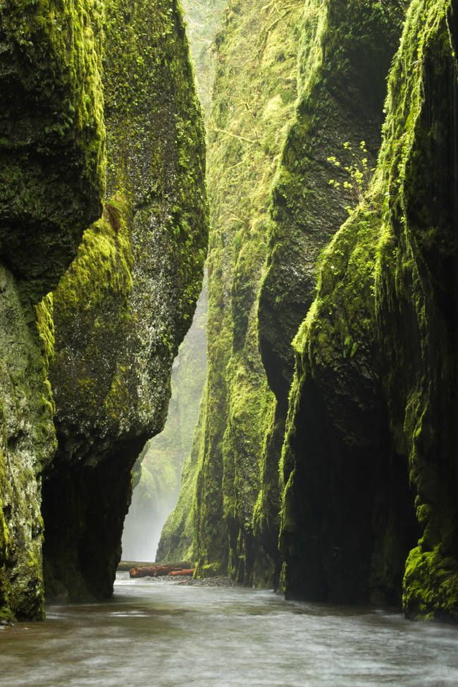 These 30 Places Are So Surreal You Won't Believe They Are In The U.S. 21.) Oneonta Gorge, Columbia River Gorge, Oregon