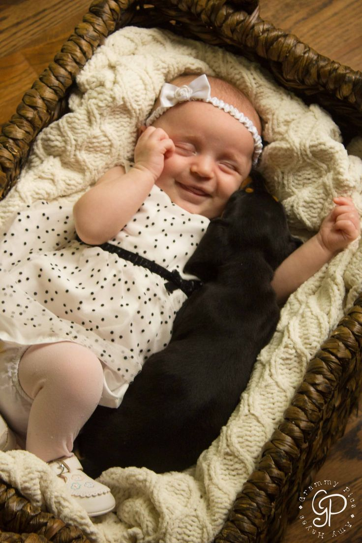 A baby and her puppy <3 - 1 month old newborn photography - newborn with miniature dachshund