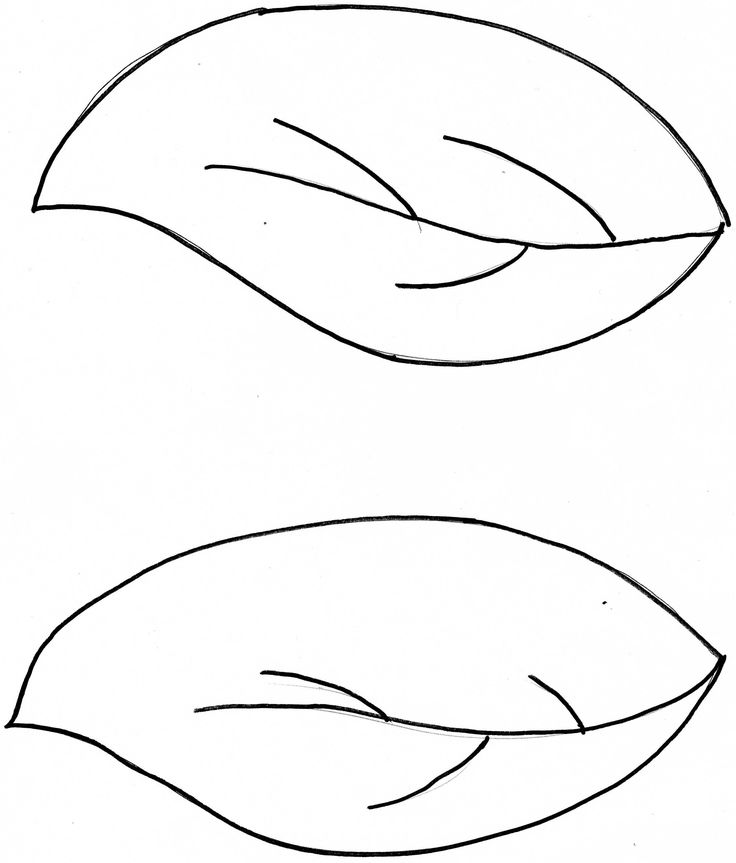 leaf templates for the thanksgiving tree