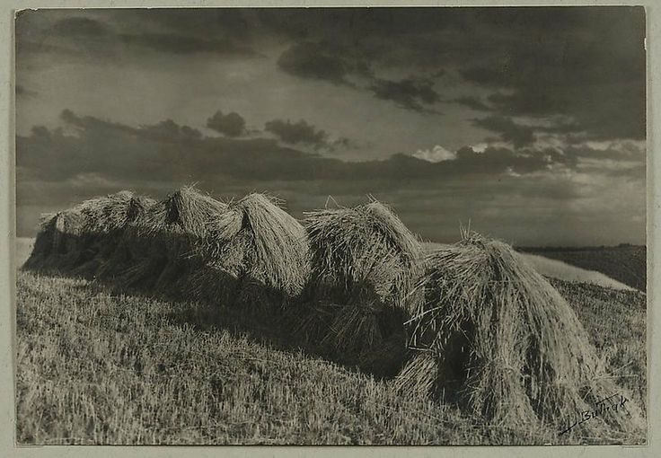 Jan Bułhak. 'Urodzaj'. Sheaves of grain in the setting sun 1912-20