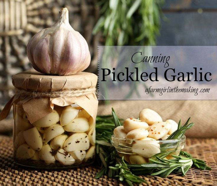Pickled garlic is an amazing way to preserve the harvest
