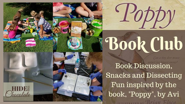 One of our favorite parts of homeschool is our book club. We read the book throughout the month and then met with all the girls for our Poppy Book Club.