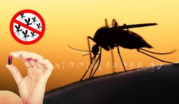 Ενώ τα κοινά εντομοαπωθητικά μπορεί να φαίνονται σαν μια προφανή λύση για την προστασία από τα κουνούπια, κάποια σπρέι στην αγορά περιέχουν τοξικά χημικά που έχουν επικίνδυνες παρενέργειες αν απορροφηθούν από το δέρμα ή σε