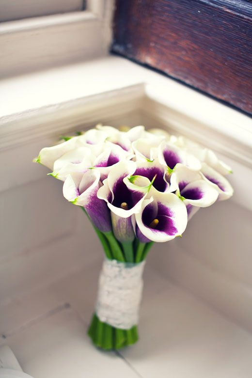 My beautiful picasso lily bouquet and M-O-H's ivory tulips :  wedding bouquet bridesmaids flowers purple AshHannah 1881