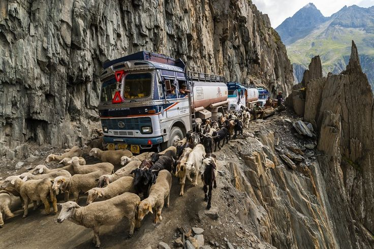 ZOJI LA INDIA Ladakh and Kashmir are connected by this 9-km-long road. On top of everything, this road is extremely narrow, although it has to fit in both drivers and livestock.