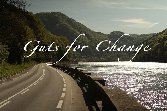 GFC Landscape Donau1 by Guts for Change Tour, via Flickr http://www.gutsforchange.de