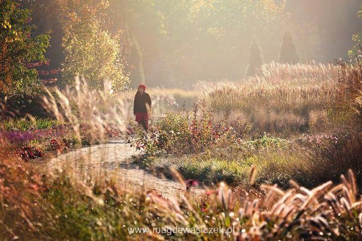 Arboretum Trojanów. Nadie es profeta en su tierra | El Blog de La Tabla