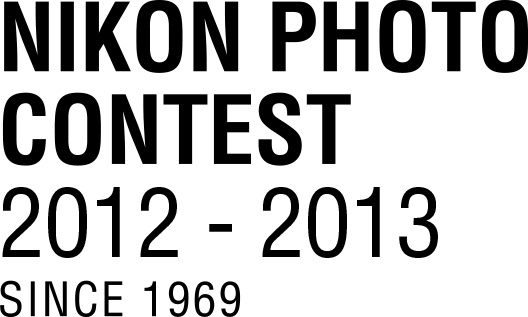 "34ème ""Nikon Photo Contest"""