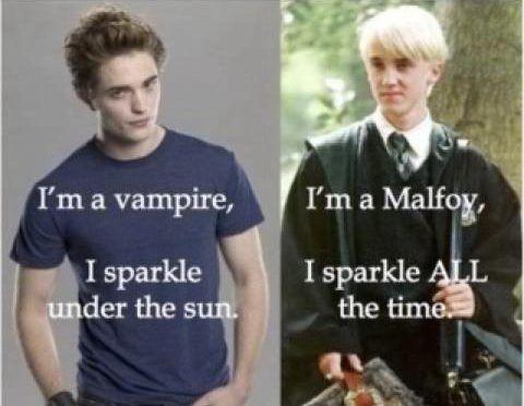 22 Epic Harry Potter Vs Twilight Memes