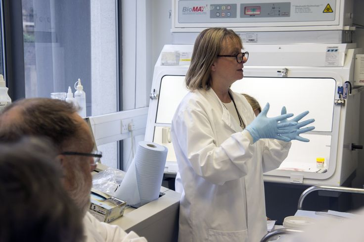 Prof Louise Jones demonstrating breast pathology - VOICE Course 2015. Photo by Marianne Baker