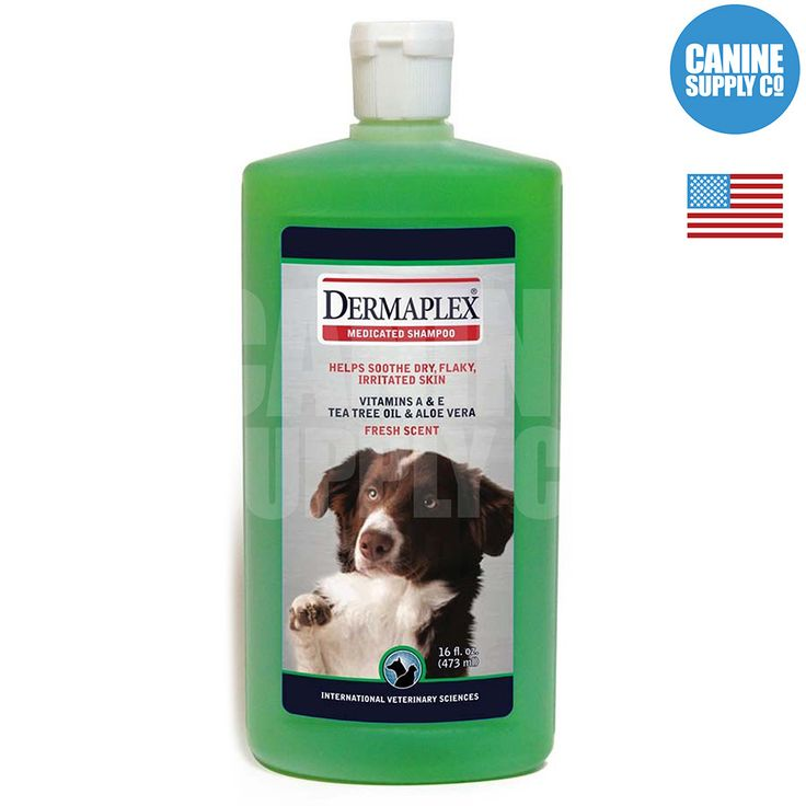 Dermaplex Medicated Dog Shampoo - All Sizes