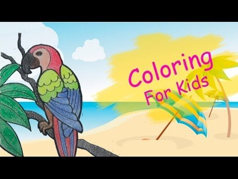 Coloring Pages For Kids With Parrot Coloring Book Pi n' Mo