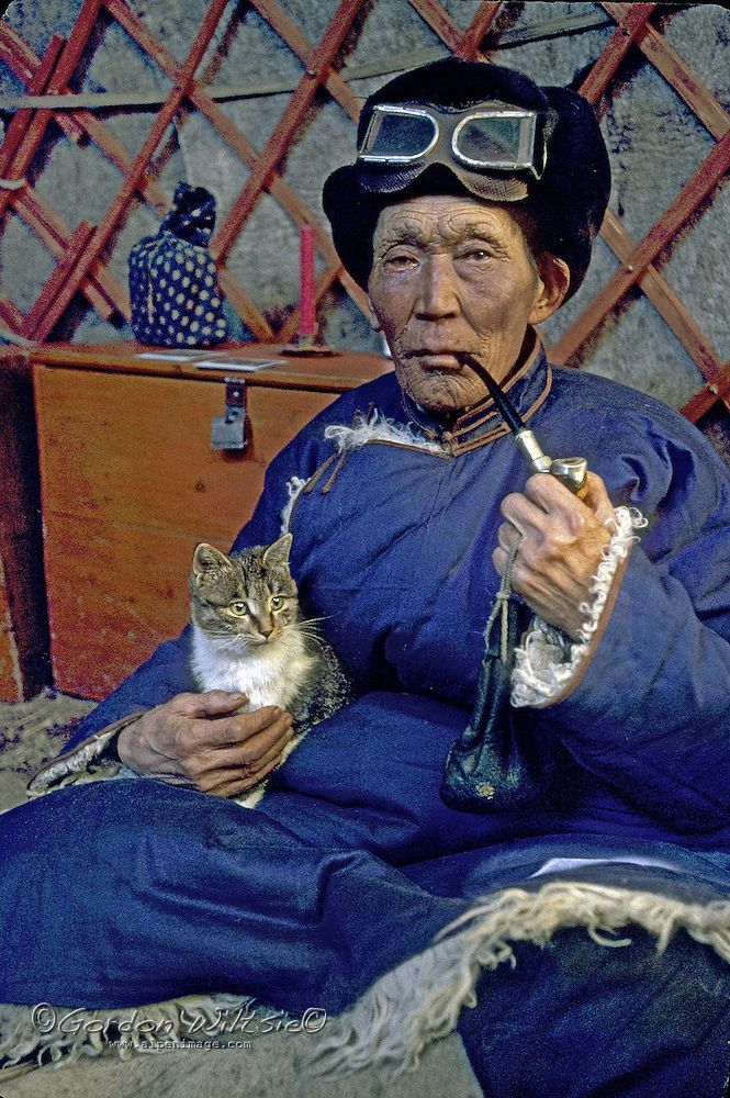 Horidal Saridag Mountains, Mongolia - A 75-year herder relaxes with his pipe and cat in his ger/yurt. - Gordon Wiltsie