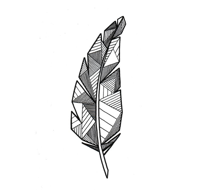 Geometric feather.