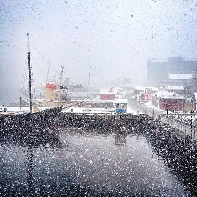 Ever wonder what Halifax, Nova Scotia would look like as a snow globe?