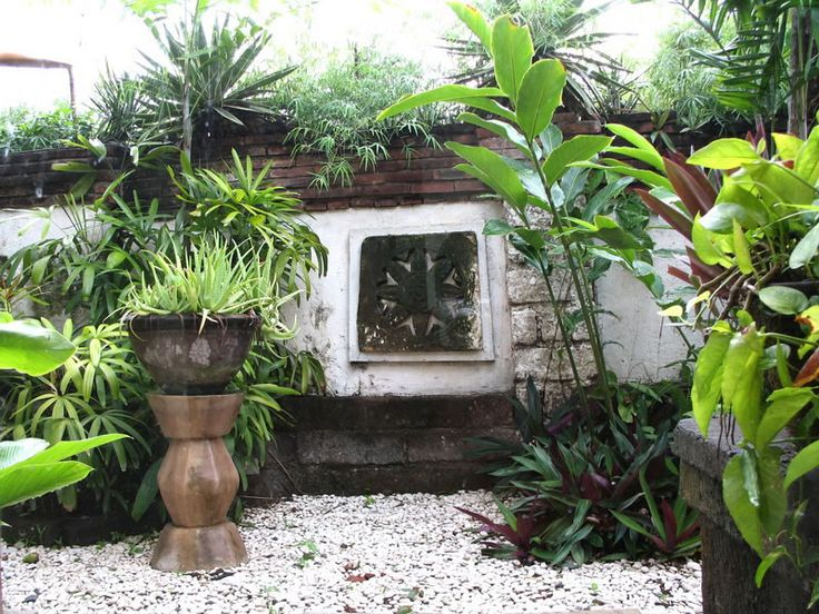 133 best Boho Garden images on Pinterest Gardens Tropical