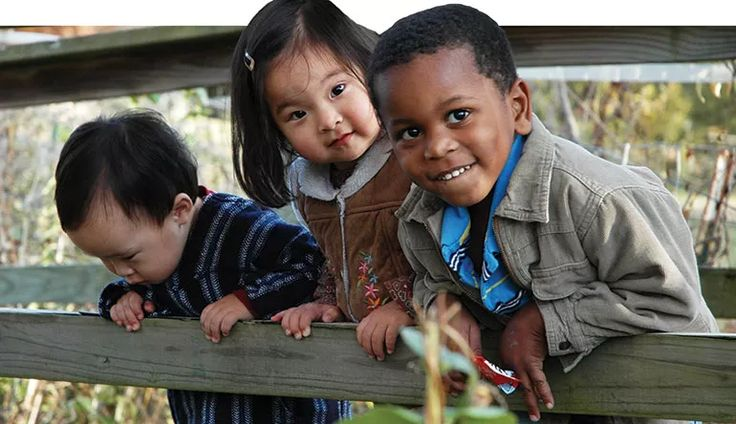 an introduction to the issue of racism in adoption Developing and adopting a comprehensive national action plan and  introduction  having to deal with new forms of racism, racial discrimination and related  problem a national action plan and strategy to combat racism a national.
