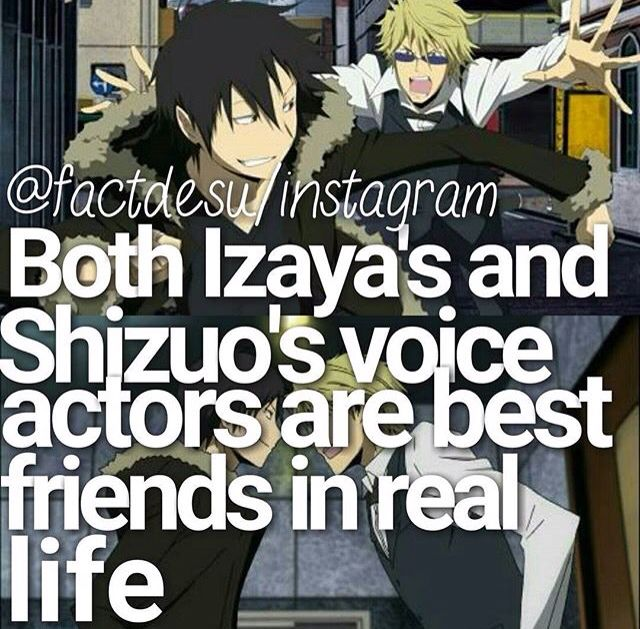 Anime facts durarara! How interesting ne? Another interesting fact is Izaiza share the same birthdate as Shizu-chan's seiyuu birthday 04/05 while Shizu-chan share the same birthdate as Izaiza's seiyuu birthday 28/01...Doesn't this clik something in your mind?! Shizaya is REAL!!
