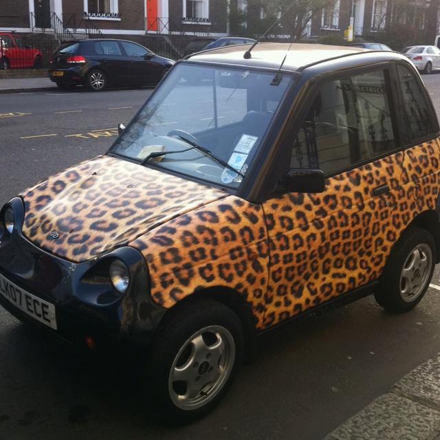 Car leopard funny