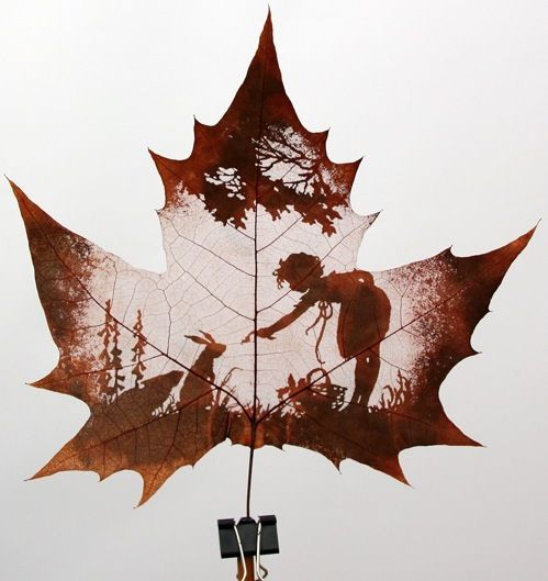 'Natural leaf carving is actual manual cutting and removal of a leaf's surface to produce an art work on a leaf.' Leaf Carving Art  Incredible.