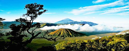 Mount Bromo Tour Packages option