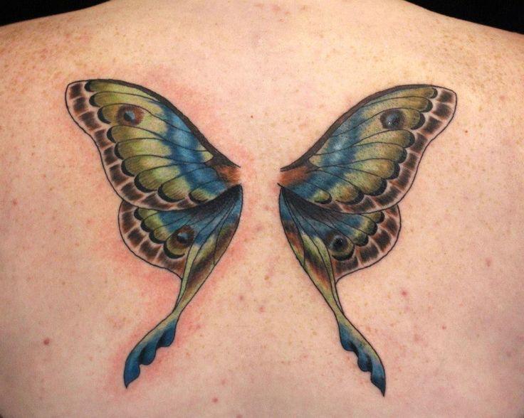 the 25 best wings back ideas on wings