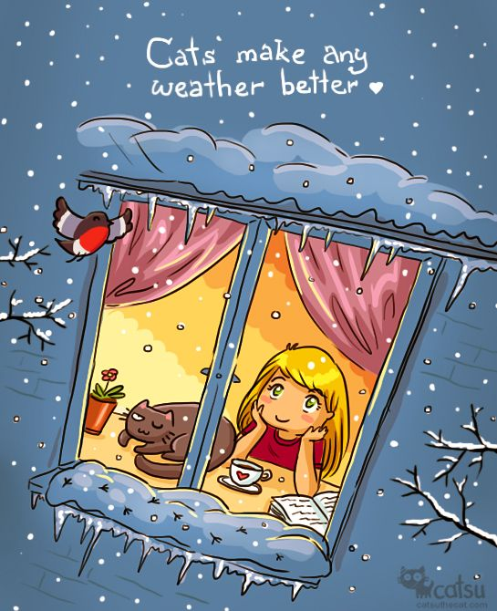 """-20C outside... """"Cats make any weather better"""" :)) 