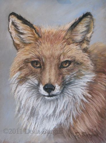 Wildlife Painting Red Fox Pastel by Della Burgus -- Art Helping Animals
