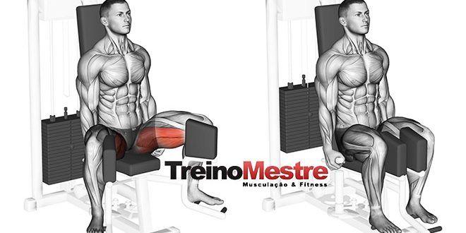 Cadeira adutora, como utilizar corretamente em seu treino?