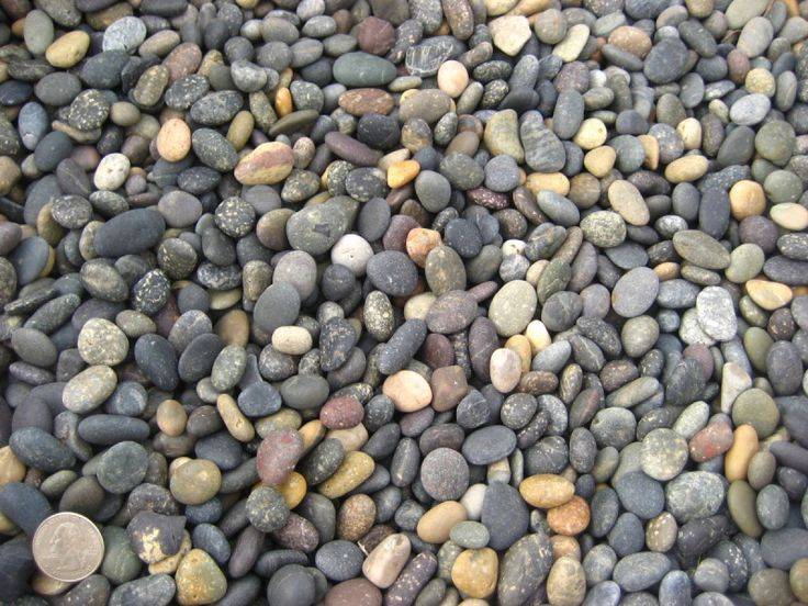 Image from http://www.crownhillstonesupply.com/picture/2-black%2520mex.%2520pebbles%25201.2.jpg%3FpictureId%3D4677134%26asGalleryImage%3Dtrue.
