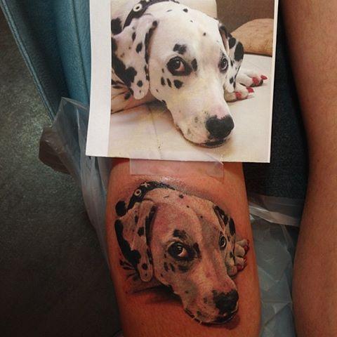 df5d0fb33 Dalmatian, puppy, dog portrait tattoo done by Christy Brooker at Damask  Tattoo | Tattoos | Dog portrait tattoo, Tattoos, Dog tattoos