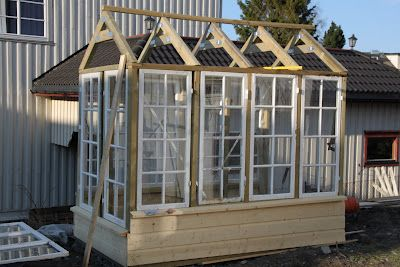 DIY greenhouse from old windows. Nice!