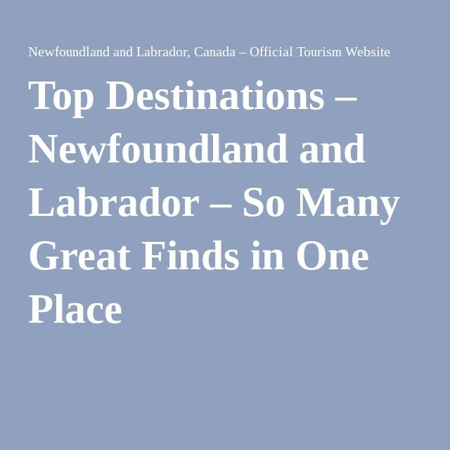 Top Destinations – Newfoundland and Labrador – So Many Great Finds in One Place
